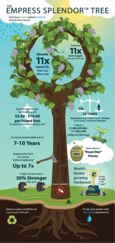 infographic_small