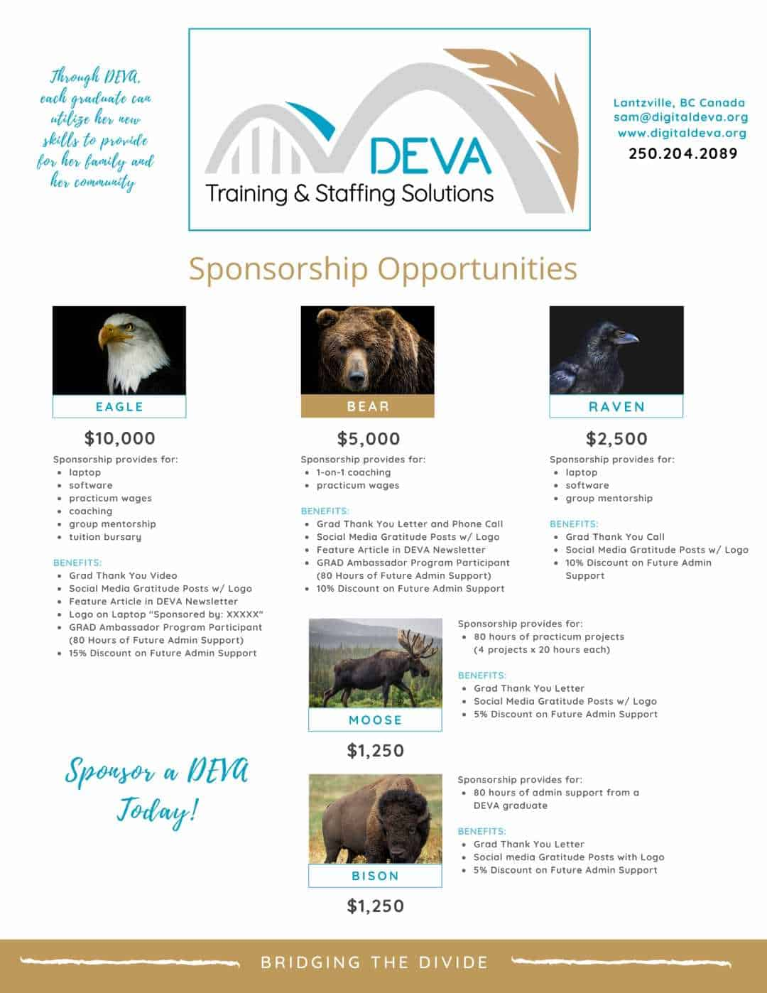 DEVA Brochure Sponsorship (Large)